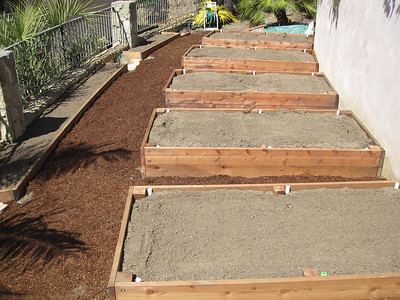 5 raised beds (April 2012)