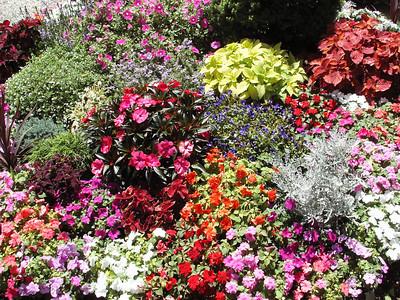 West Avon Road flower house - July 2009