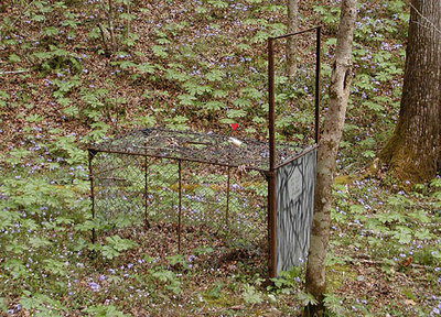 Hog Trap with red V pointing to the bait The door is down so it is sprung and needs reset.   Whiteoak Sinks GSMNP April 3, 2007