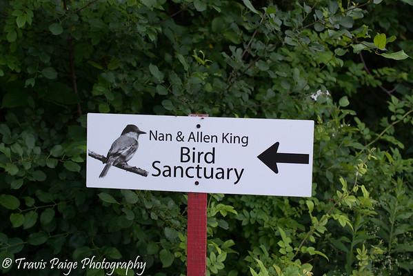 King Bird Sanctuary Sign