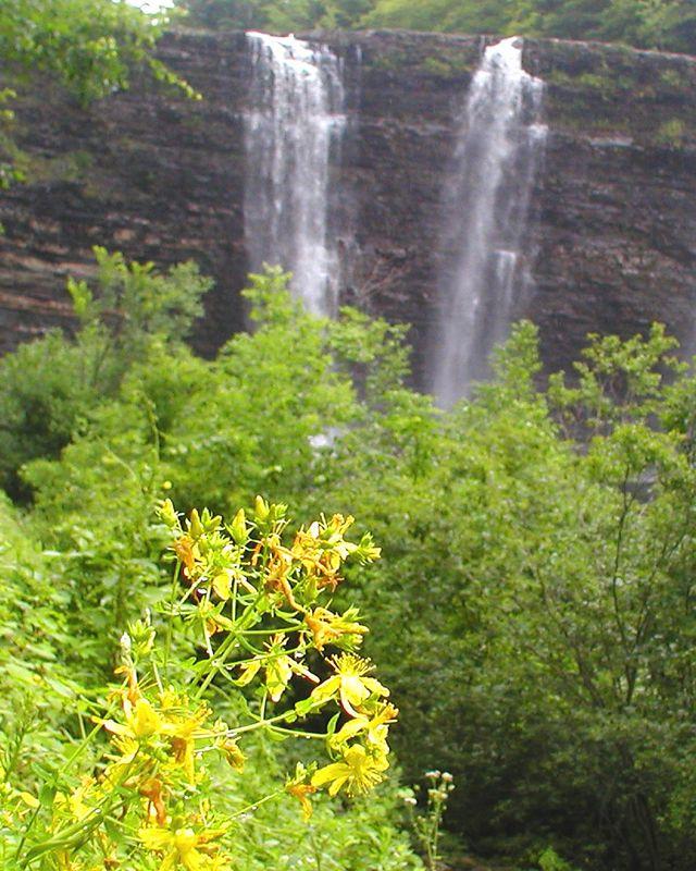 Salmon River Falls, NY 7/16/04