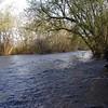 <B>View from the river bank looking upstream toward River John's.