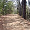 Schoolhouse Gap Trail near the junction of Scott Mtn Manway and the park boundary for the Smokies<br /> GSMNP TN 2008