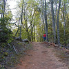 My second favorite vista along this trail is coming up to Little Brier Gap!<br /> Kenny beat me there since he wasn't taking pictures!<br /> This is a beautiful spot. <br /> GSMNP May 08