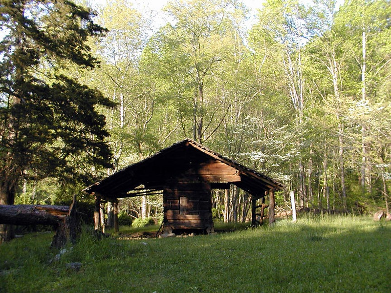Looking back at the barn from the woods. Walker Sisters Homeplace.<br /> GSMNP May 08