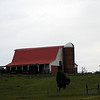 "We're pulling up to Maple Lane Farm to explore a new corner of our county.<br /> We've been saying for a couple years we were going to visit here and try the corn maze. Today is the day!  Here is a link for info in case you live nearby and want to visit. <a href=""http://www.maplelanefarms.com/"">http://www.maplelanefarms.com/</a>"