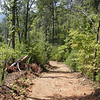 Red Dirt trail heading up to the summit of the mountain.