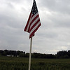 Old Glory flies over the corn field at Maple Lane Farm.
