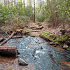 One of many fords along Beard Cane Creek Trail. <br /> Today they were not as easily rock hopped.