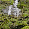 Fern Branch Falls in Springtime is quite a beautiful scene!<br /> Green and mossy and draped with ferns and other pretty plants and flowers.<br />  Porters Creek Trail, GSMNP TN 4/09