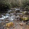 Hesse Creek flows by CS 3