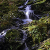Believer Falls on Rush Branch<br /> A small off trail waterfall in the Smokies.<br /> GSMNP TN 3/30/09