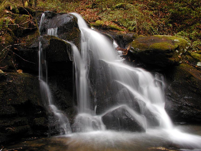 White Oak Flats Cascade was a new location for us. An off trail waterfall with an extremely short and easy hike!<br /> Not a huge falls, but very scenic.  We took a Saturday and hiked up Sams Creek and when we didn't see any flowers...... we went waterfalling instead.<br /> GSMNP TN