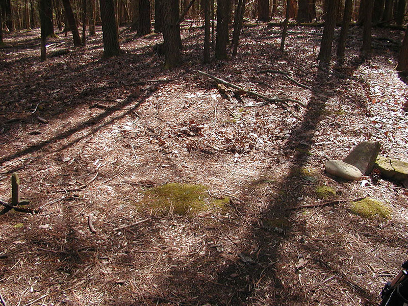 View of the entire grave site of Abraham Law. Headstone and footstone markers.<br /> Early Spring when the leaves haven't come out fully and the flowers are not as plentiful is a good time to check out historic sites!<br /> White Oak Sinks GSMNP TN 3/09