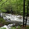 The Oconaluftee River  near Smokemont<br /> GSMNP NC 5/8/09