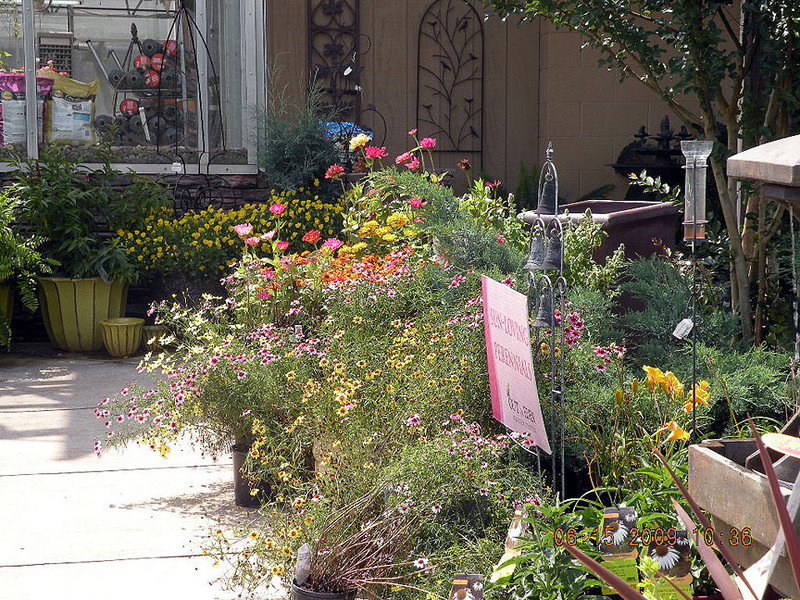 Grouping of sun loving, butterfly attracting perennials. <br /> Out of Eden, Maryville TN