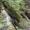 A spring we found which is the source of one of the creeks on the premises. Considering what I learned about the difficulties the college and community have had with Vulcan Materials messing with Duncan Branch it makes it all the more important that this stream source is in a protected place.<br /> Maryville College Woods, TN 4/09