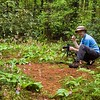 Dan Heimsoth taking photos in Panthertown of hundreds of Pink Lady Slipper orchids.<br /> Panthertown NC 5/09<br /> Photo courtesy of Rich Stevenson