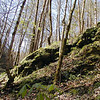 Rocky cliffs surround Rush Branch on the way upstream.<br /> GSMNP TN 3/30/09
