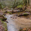 Beard Cane Creek is sandy and gravely in many places.  The trail crosses and recrosses or stays in the creek.