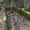 This odd looking structure is located alongside Rush Branch on this hike.  It has been here so long it has become moss covered.  There is a pipe located directly above it that at one time fed a supply of water from the stream to this structure.  <br /> Some folks in the area built trout ponds and raised trout for their own personal use and to make money selling them.<br /> This structure is a trout pond.
