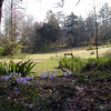 Hedgewood Gardens in Townsend is another fine place to take a wildflower walk. The gardens charge a small fee and are open in Spring by appointment. The garden features both native wildflowers and heirloom garden cultivars. Blount County, TN 4/08<br>