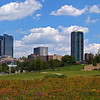 2006  --  Ft Worth, Texas  -  Pier 1 corporate office grounds
