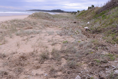 Area of ingress where the sea flowed north and south in the trough at the base of the main dune.