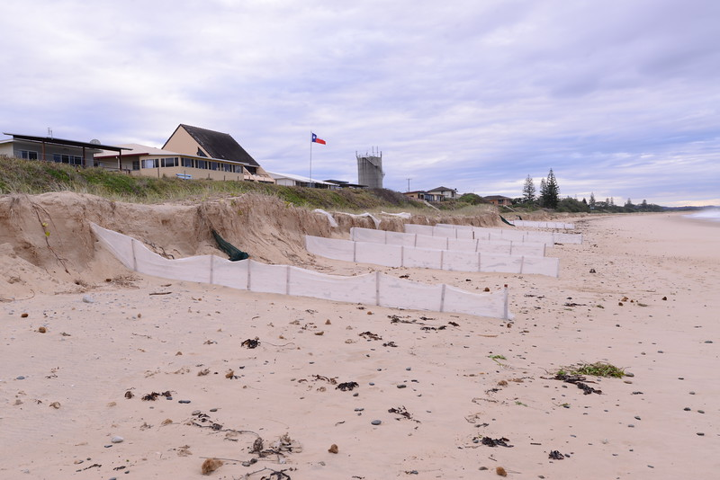 South Terrace showing cut away and new sand fences.  The seaward end of the fences is about at the level of the current high tide mark, but will be move further seaward as sand builds up.