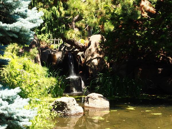 Yakima Arboretum, 6-16