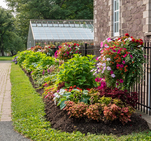 Government House gardens