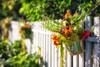 Picket Fence (#0234)