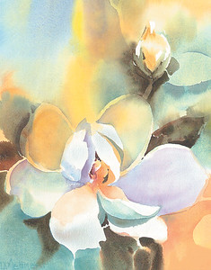 Magnolia SLC