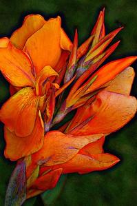 FLW_4656-ColorMeGrunge#2-Glow2