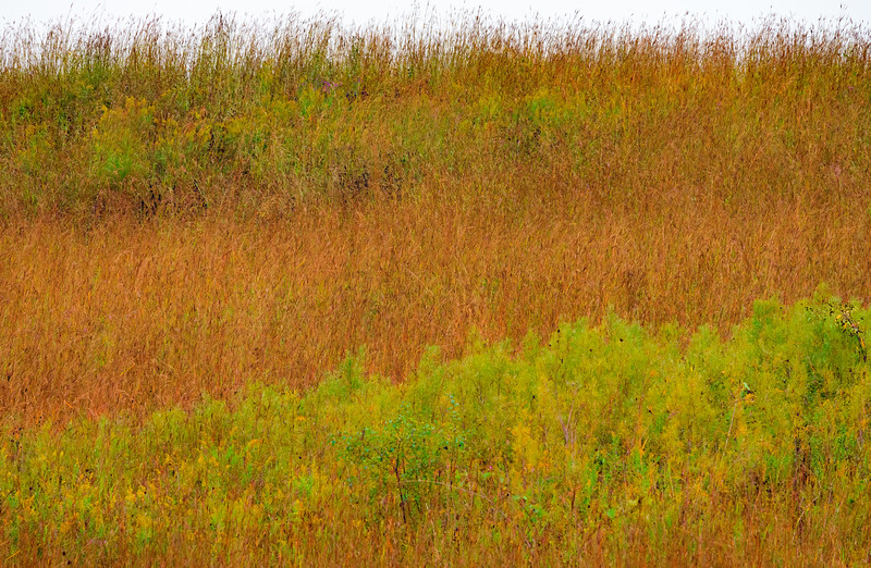 Autumn Prairie Patterns