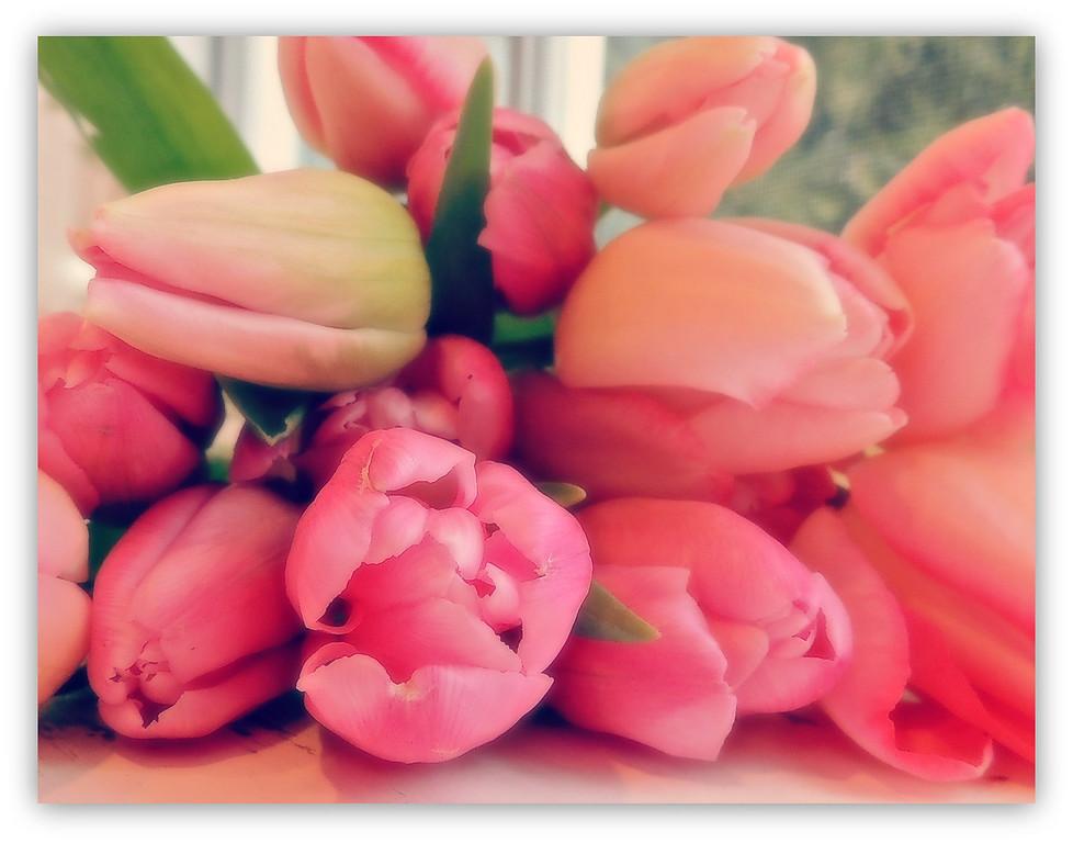 A Breath of Spring