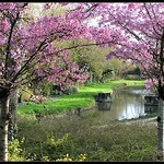 Parc of La Rochelle