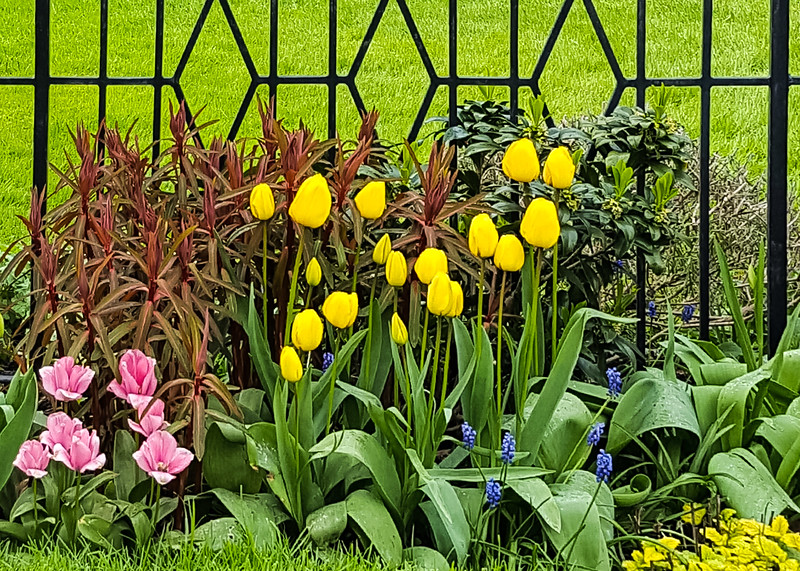Spring at Government House