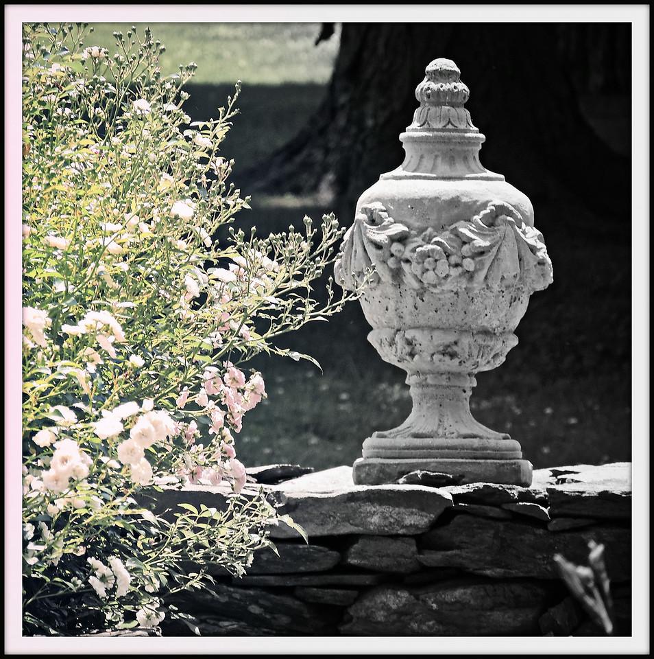 Roses & Urn