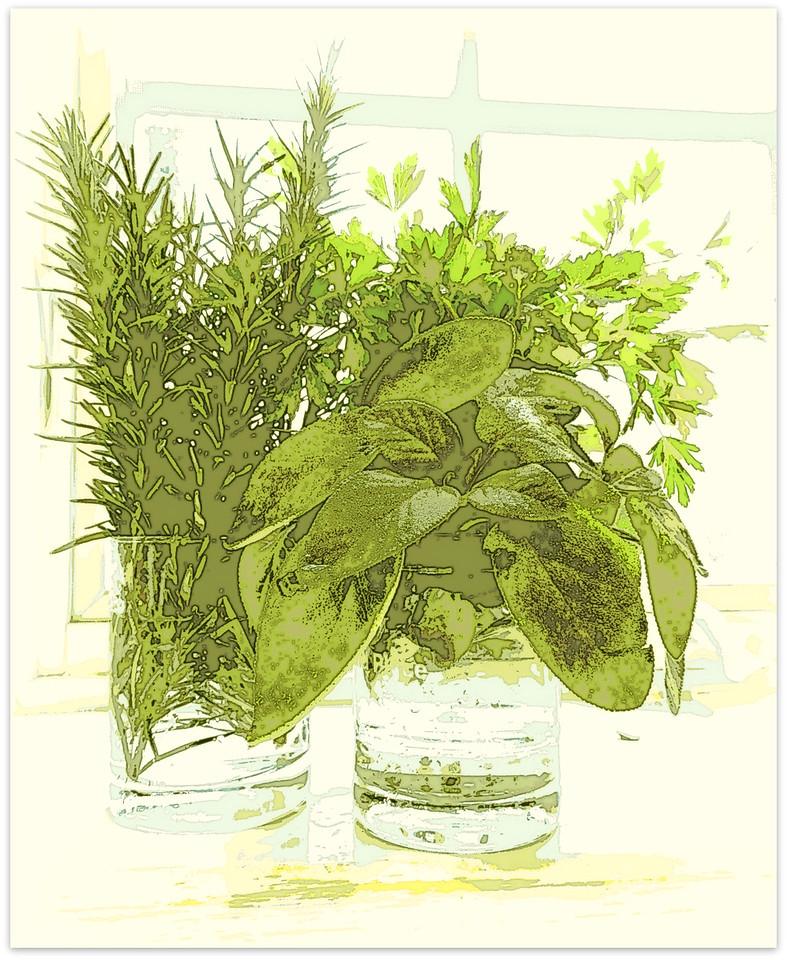 December Herbs
