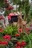 Reindeer In The Flowers (#0347)