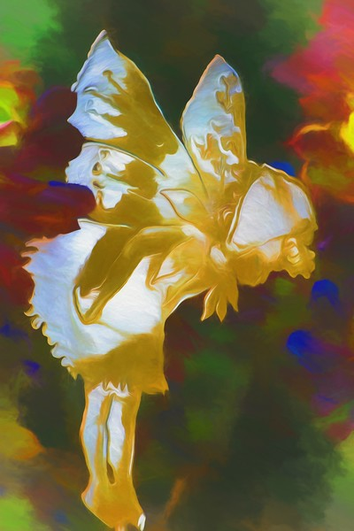 IMG_8956-Topaz Fairy in Garden.jpg