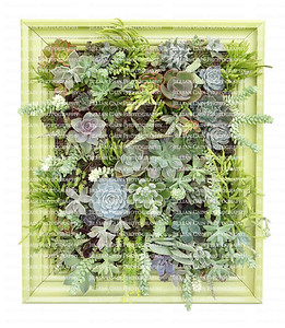 Succulent Vertical Wall Hanging