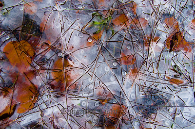 Pond Ice Art