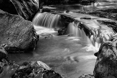 Purisima Creek, BW