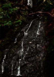 Triple Falls, Uvas Canyon County Park, Morgan Hill, California, 2010