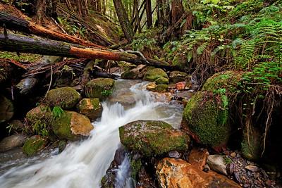 Purisma Creek, California