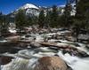 Stream, Alpine County, California, 1995