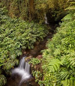 Creek, Hawaii
