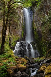Kentucky Falls, Oregon